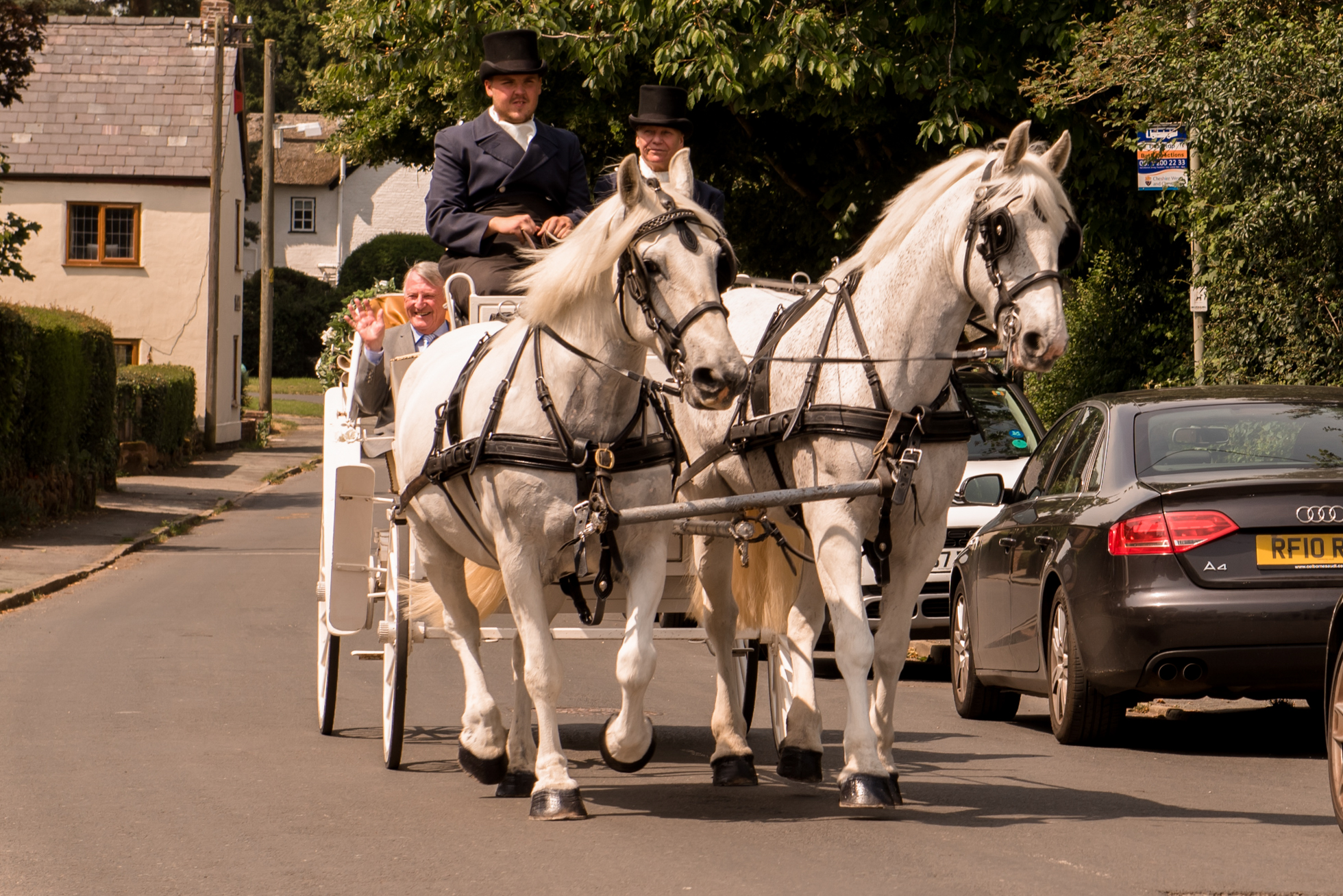 Bridal arival horses and carriage