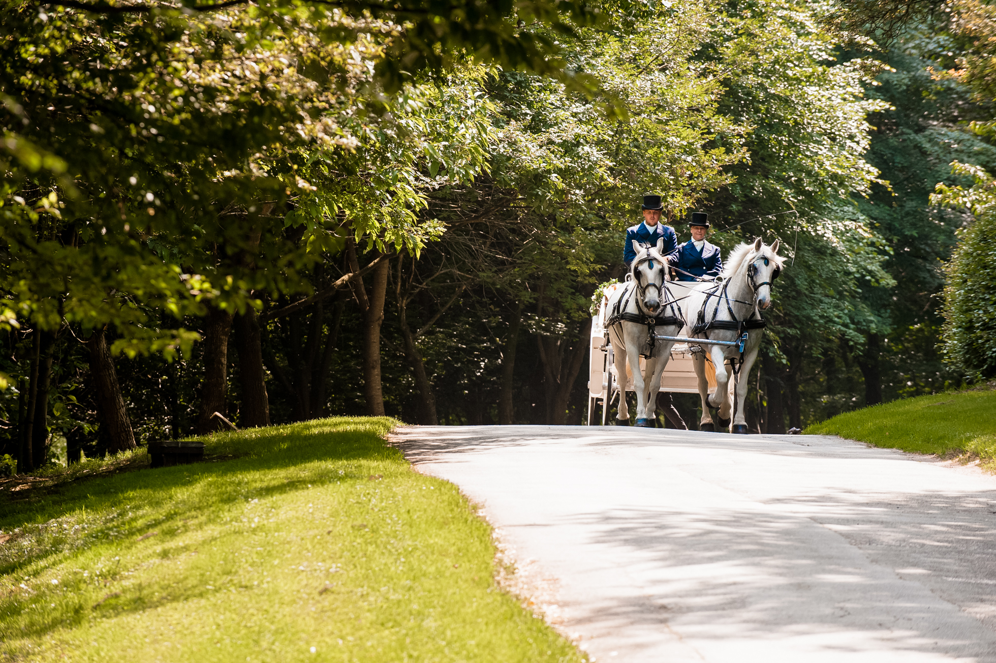 Bride and groom arrival to Holford estate